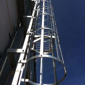 cat ladders